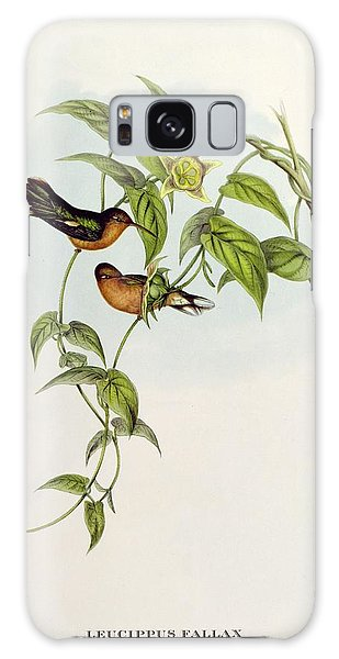 Lovebird Galaxy S8 Case - Leucippus Fallax by John Gould