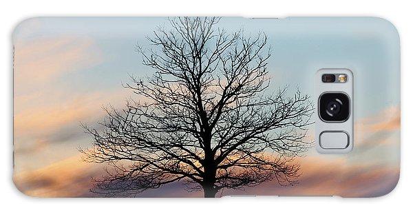 Liberty Tree Sunset Galaxy Case