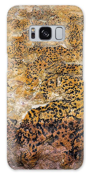 Galaxy Case featuring the photograph Lichen Abstract, Bhimbetka, 2016 by Hitendra SINKAR