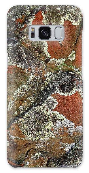 Lichen Abstract Galaxy Case