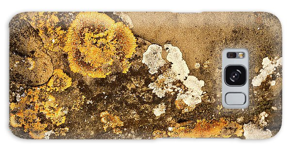 Galaxy Case featuring the photograph Lichen On The Piran Walls by Stuart Litoff