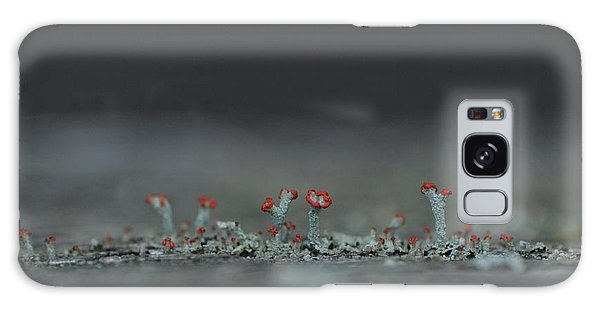 Lichen-scape Galaxy Case by JD Grimes