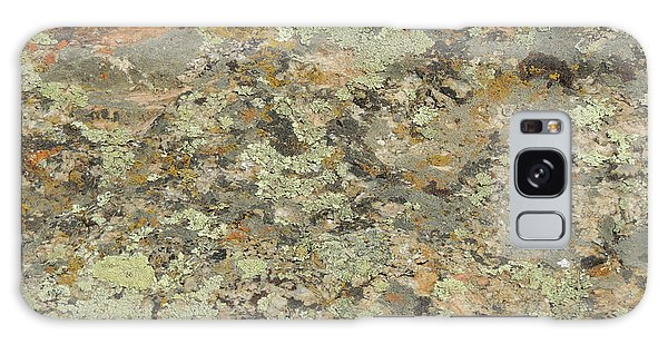 Lichens On Boulder Galaxy Case by Jayne Wilson