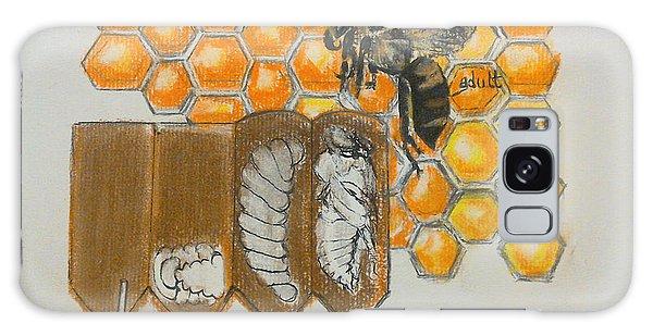 Life Cycle Of A Bee  Galaxy Case by Francine Heykoop