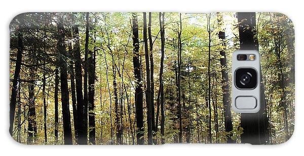 Light Among The Trees Galaxy Case by Felipe Adan Lerma