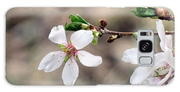 Light Pink Weeping Cherry Blossom Galaxy Case by Janice Drew