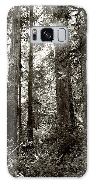 Light Through Redwoods Galaxy Case