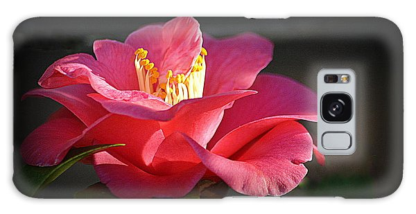 Galaxy Case featuring the photograph Lighted Camellia by AJ Schibig