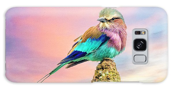 Lilac Breasted Roller At Sunset Galaxy Case