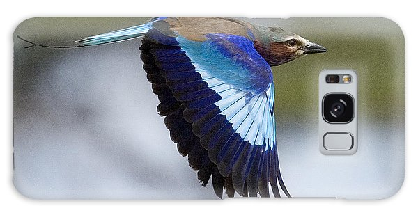Lilac-breasted Roller-signed Galaxy Case