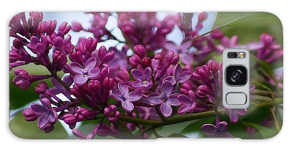 Lilac Buds Galaxy Case
