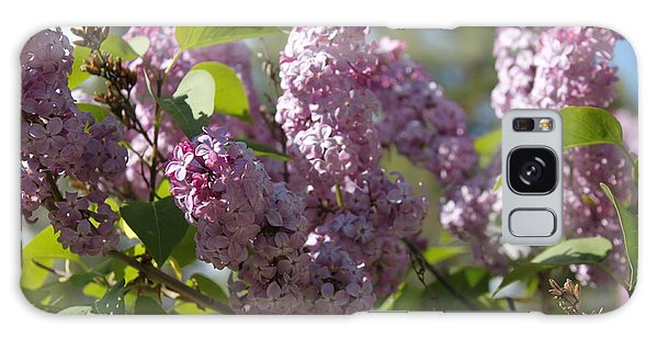 Galaxy Case featuring the photograph Lilacs 5548 by Antonio Romero