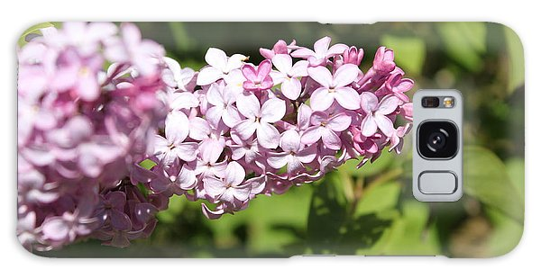 Galaxy Case featuring the photograph Lilacs 5550 by Antonio Romero