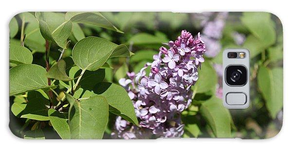 Lilacs 5551 Galaxy Case