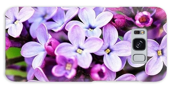 Lilacs Galaxy Case by Penni D'Aulerio