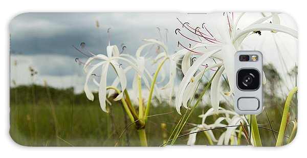 Lilies Thunder Galaxy Case by Christopher L Thomley