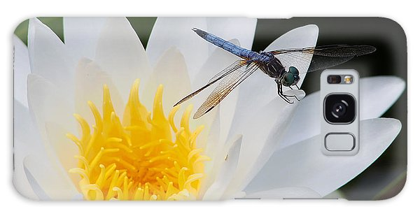 Lily And Dragonfly Galaxy Case