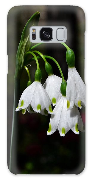 Lily Of The Valley 003 Galaxy Case by George Bostian