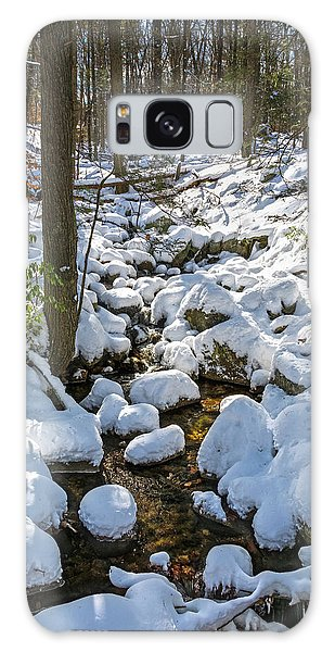 Lily Pads Of Snow Galaxy Case