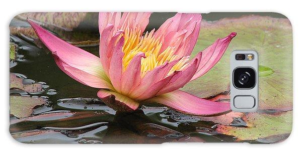 Lily Pond Galaxy Case by Jan Cipolla