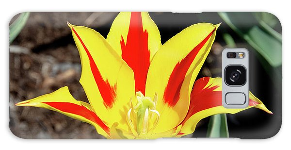 Lily Tulip Galaxy Case