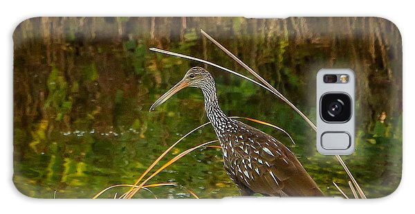 Limpkin At Water's Edge Galaxy Case by Tom Claud