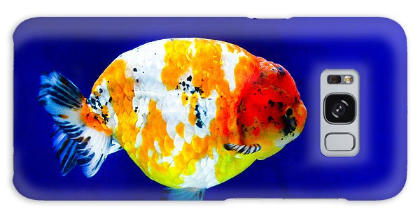 Lion Head Goldfish 3 Galaxy Case