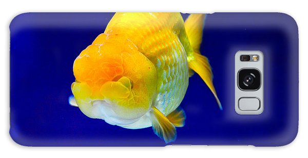 Lion Head Goldfish 5 Galaxy Case