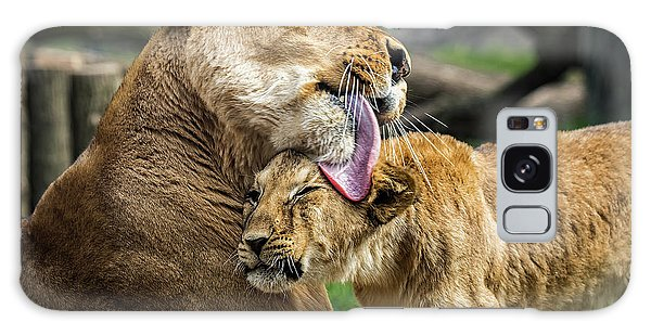 Lion Mother Licking Her Cub Galaxy Case