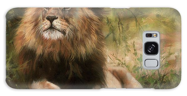 Lion Resting Galaxy Case by David Stribbling