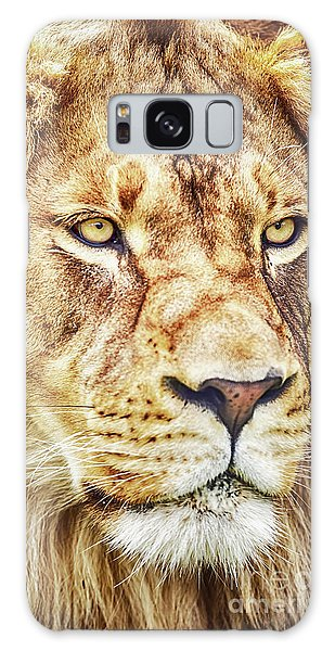 Lion-the King Of The Jungle Large Canvas Art, Canvas Print, Large Art, Large Wall Decor, Home Decor Galaxy Case by David Millenheft