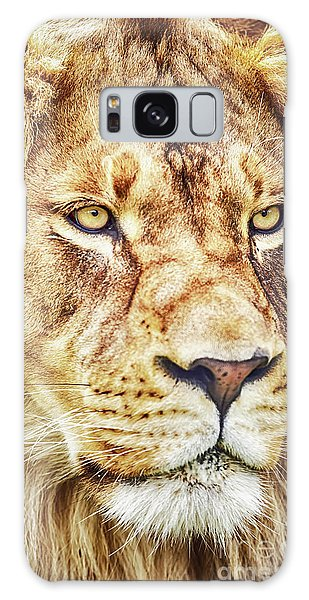 Lion Is The King Of The Jungle Galaxy Case