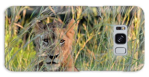 Lion Warily Watching Galaxy Case