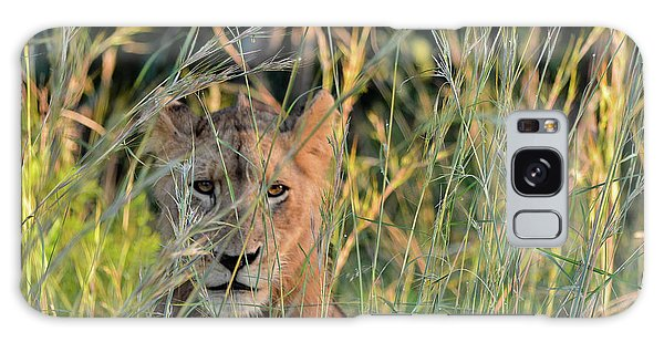 Lion Warily Watching Galaxy Case
