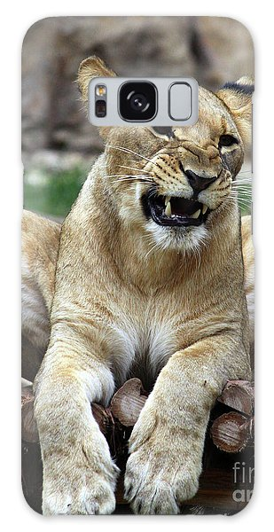 Lioness 2 Galaxy Case by Inspirational Photo Creations Audrey Woods