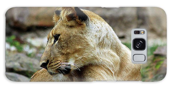 Lioness Galaxy Case by Inspirational Photo Creations Audrey Woods