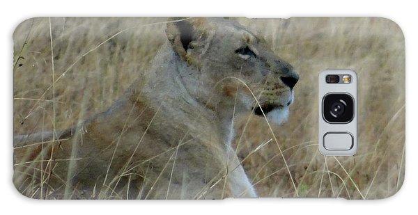 Exploramum Galaxy Case - Lioness In The Grass by Exploramum Exploramum