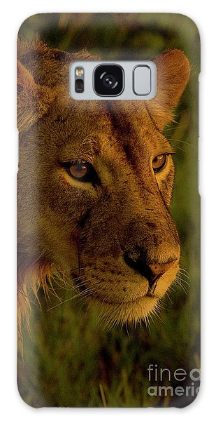 Lioness-signed-#6947 Galaxy Case