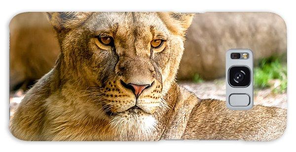 Lioness Galaxy Case by Wayne King