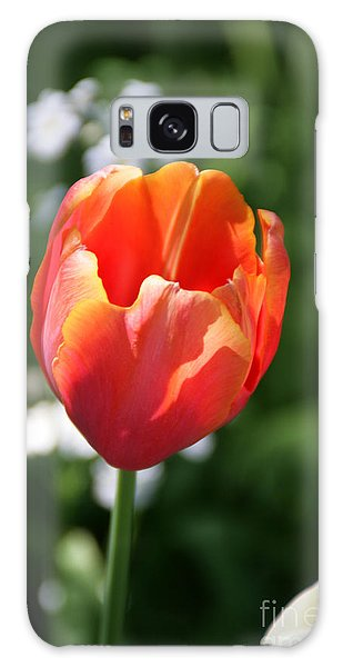 Lit Tulip 02 Galaxy Case by Andrea Jean