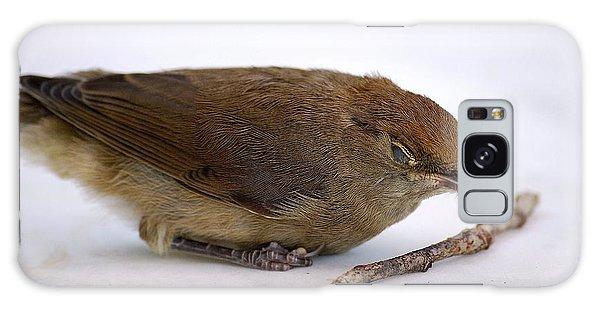Little Bird  Galaxy Case by Pierre Van Dijk