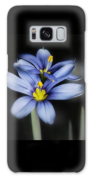 Little Blue Flowers Galaxy Case