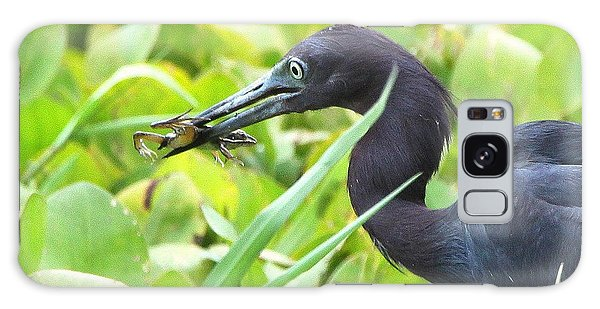 Little Blue Heron Catches A Frog Galaxy Case by Barbara Bowen