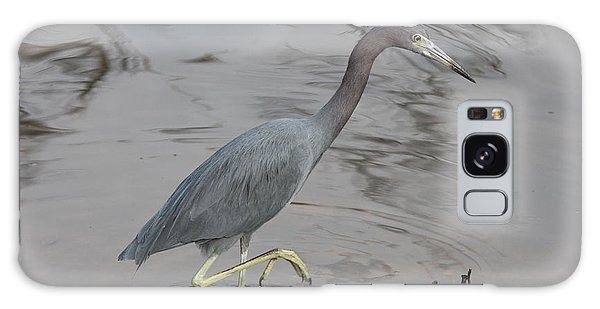 Little Blue Heron Walking Galaxy Case by Christiane Schulze Art And Photography