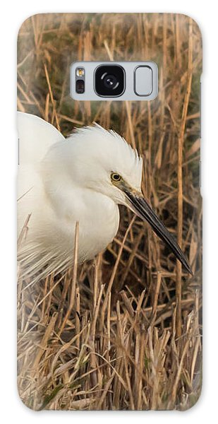Little Egret Concentrating Galaxy Case
