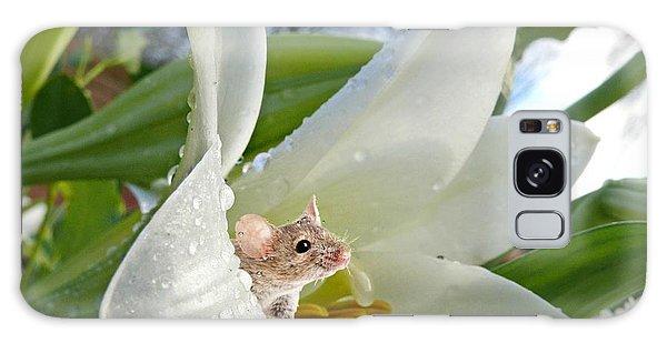 Little Field Mouse Galaxy Case