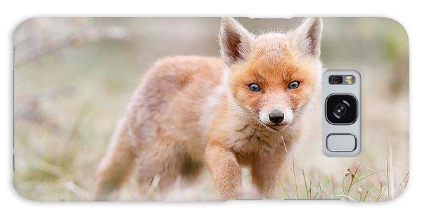 Little Fox Kit, Big World Galaxy Case