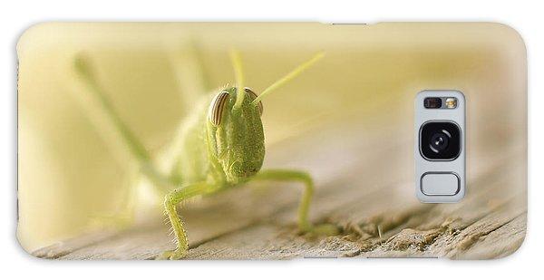 Little Grasshopper Galaxy Case by Claudia Ellis