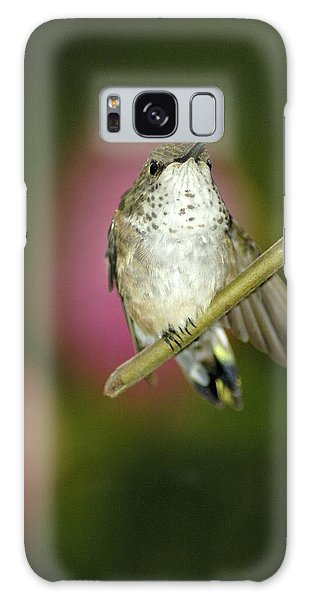 Little Humming Bird Galaxy Case