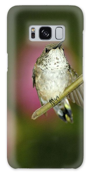 Little Humming Bird Galaxy Case
